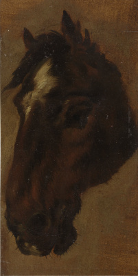 Генриетта Роннер-Книп. Голова лошади I