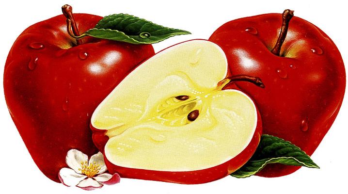 Кен Джоодри. Яблоки