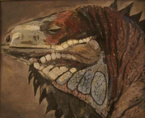 Shechkin. Iguana