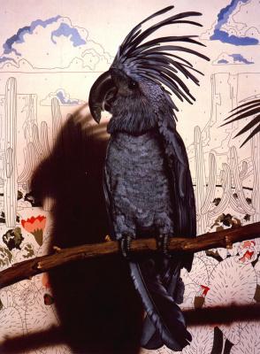 Том Палмор. Птица пытается выглядеть как индеец