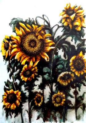 Alex Visiroff. Sunflowers