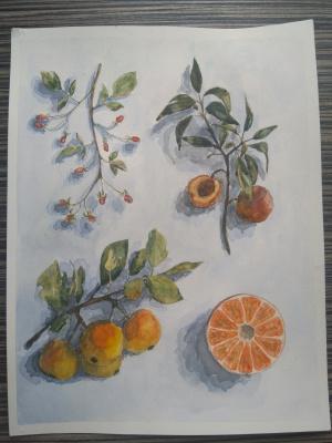 Olga Vladimirovna Dremina. The juice