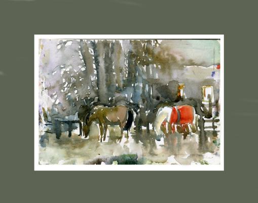 Anastasia Valerievna. Horses walk