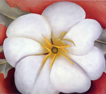 Джорджия О'Киф. Цветы 37