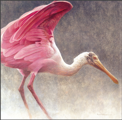 Роберт Бейтман. Розовый пеликан