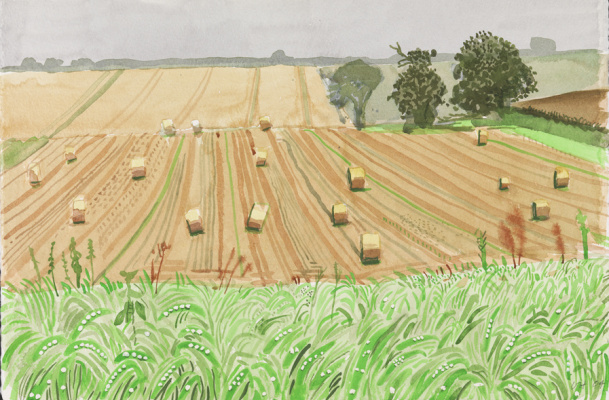 David Hockney. Yorkshire