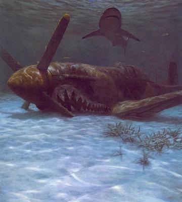 Рэндалл Скотт. Акула на песке