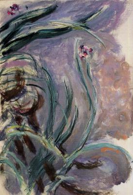 Claude Monet. Irises