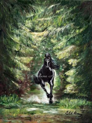 Elena Sh. Черный конь