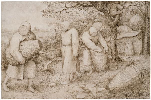 Pieter Bruegel The Elder. Пчеловоды
