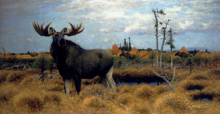 Friedrich Wilhelm Kunert. Moose