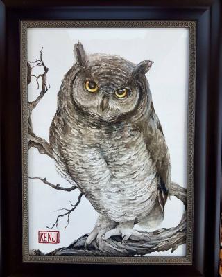 Peter Sergeevich Kucherenko. Owl