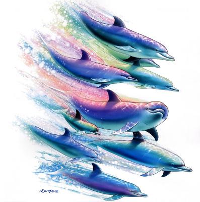 Ройс Макклюр. Дельфины 19