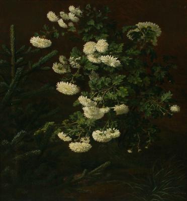 Отто Дидрик Оттесен. Белая хризантема