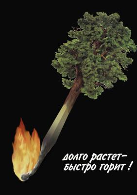 Юрий Дмитриевич Новоселов. Долго растет , быстро горит