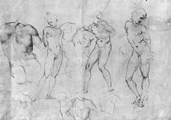 Raphael Santi. The sketches of Nude figures