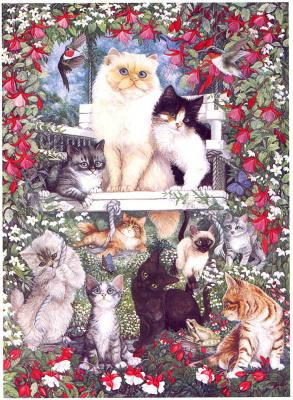 Джун Харт. Летние коты