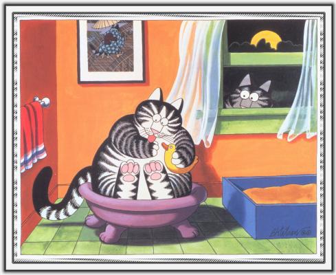 Бернард Клибан. Сны кошек 70