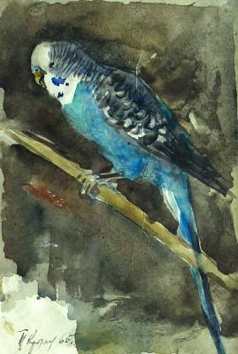 Никитич Порфирий Крылов. Попугай.1965