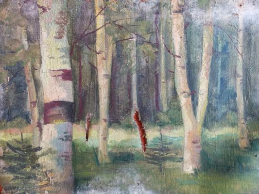 Dmitry Arkadevich Laptev. Birches