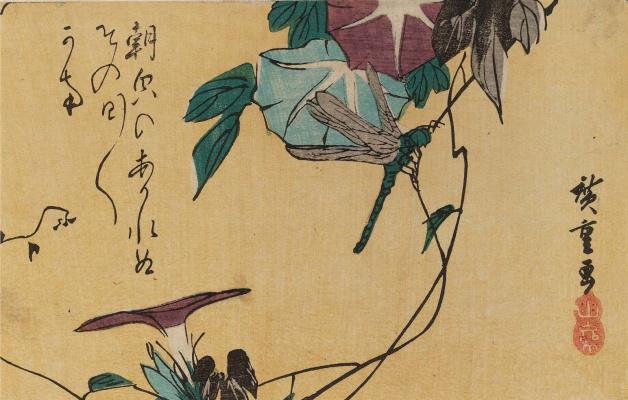 Утагава Хиросигэ. Стрекоза на стебле ипомеи