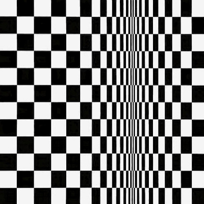 Bridget Riley. Movement in squares