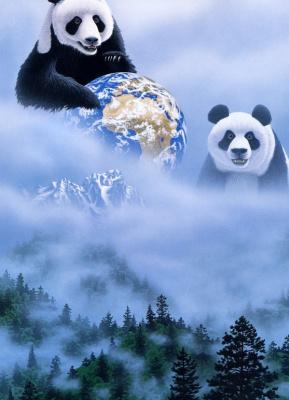 Уильям Шиммель. Панды
