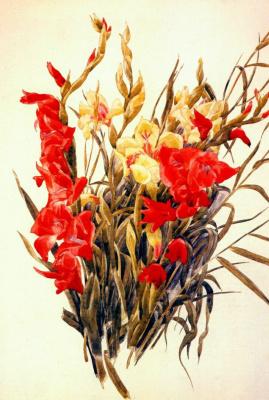 Чарльз Демут. Красные и желтые гладиолусы