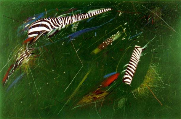 Norman Catherine. Zebra Chase