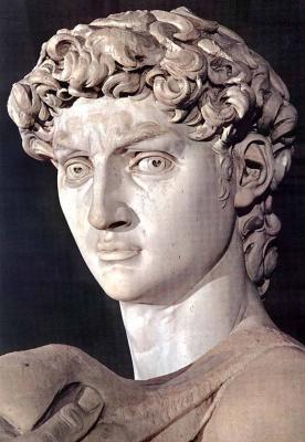 Michelangelo Buonarroti. David. Fragment