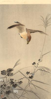 Охара Косон. Птицы 81