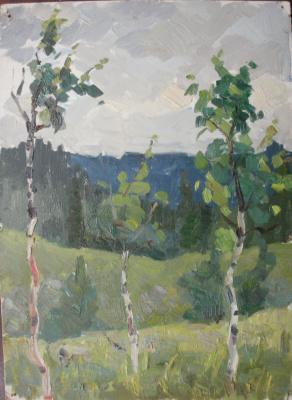 Nina Vasilievna Sedova. Birches