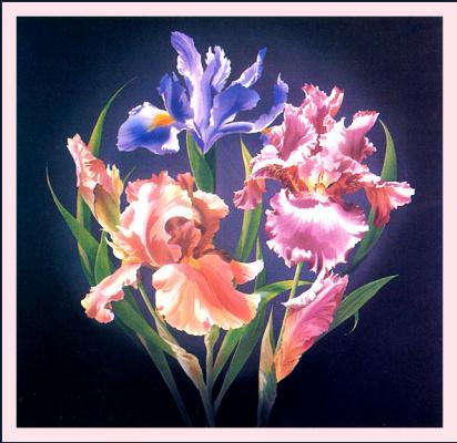 Гари Блэквэлл. Цветы