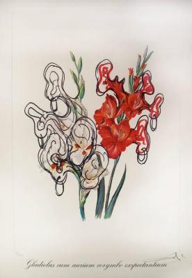 Salvador Dali. Gladioli and ears