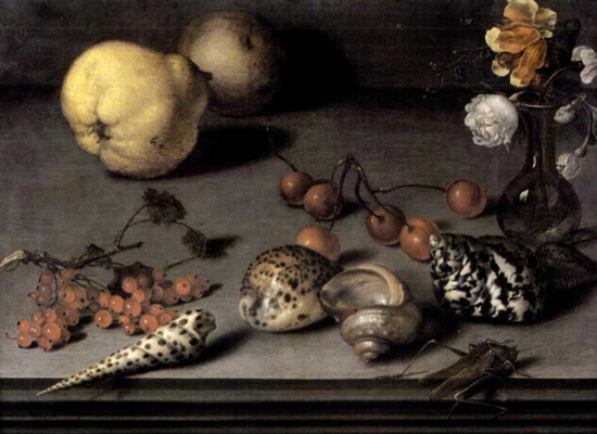 Baltazar van der Ast. Still life with quince, currants, vase, shells, and grasshopper on the edge of the table