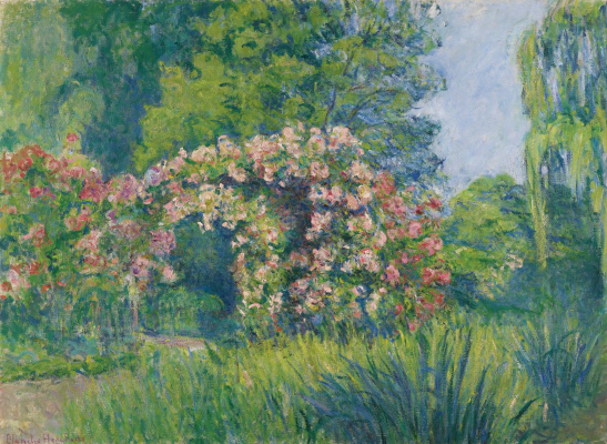 Blanche Oshede-Monet. Giverny. The Rose Garden By Monet