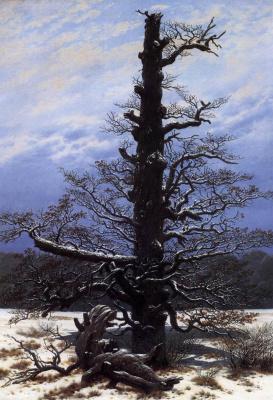 Каспар Давид Фридрих. Дерево в снегу