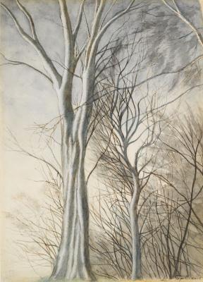 Леон Спиллиарт. Бельгия. Деревья