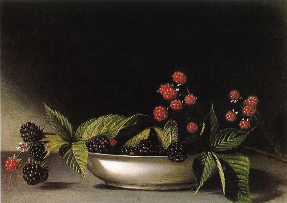 Raphaelle Peale. BlackBerry