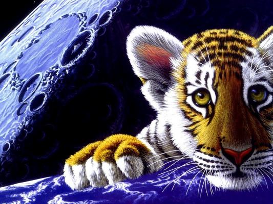 Тигр в космосе