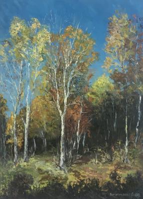 "Sophia Vinogradova. Painting ""Misconception"" (oil on canvas sky forest Autumn birch sun birch blue gold autumn forest palette knife golden golden)"