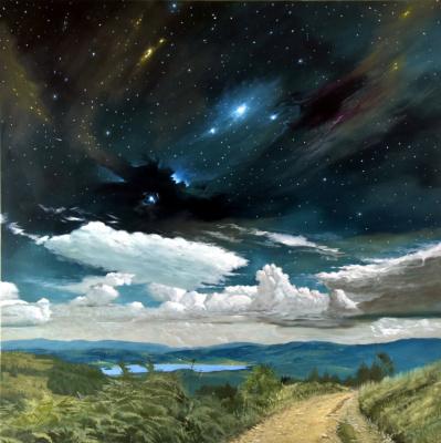 Goran Vojinovic. The stars of Vlasina