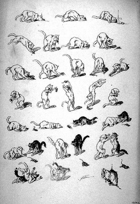 Theophile-Alexander Steinlen. Cats and mouse