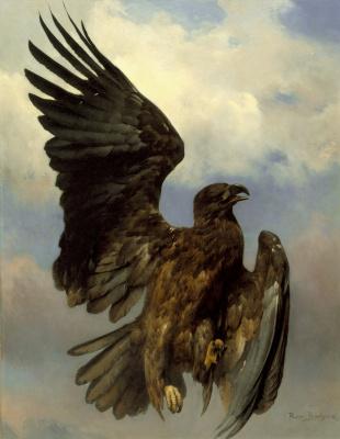 Rose Bonhur. Wounded eagle