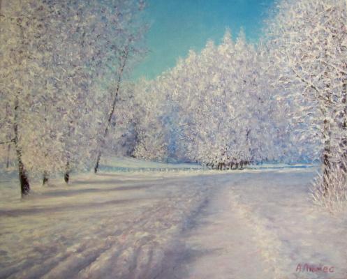 Andrew Lumez. Winter lace