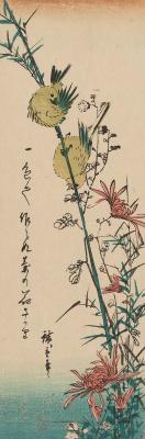 """Утагава Хиросигэ. Пара японских белоглазок и дикая хризантема. Серия """"Птицы и цветы"""""""