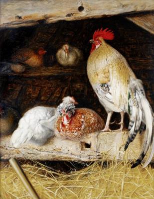 Уильям Джеймс Уэбб. Домашняя птица в сарае