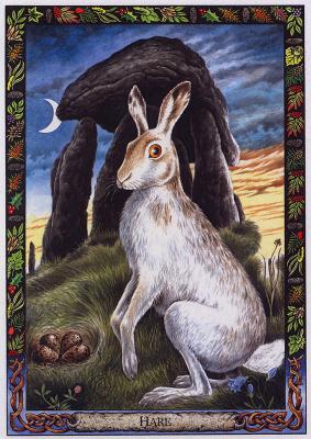 Билл Уортингтон. Заяц