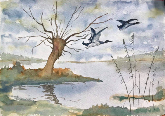 V. Leonidych. Willow in the swamp