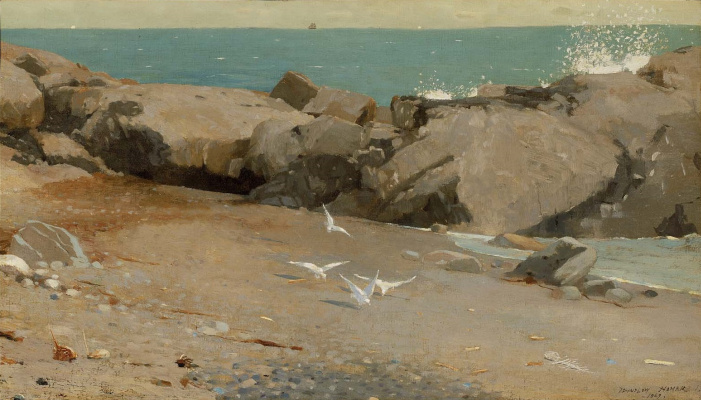 Winslow Homer. Rocky coast and gulls